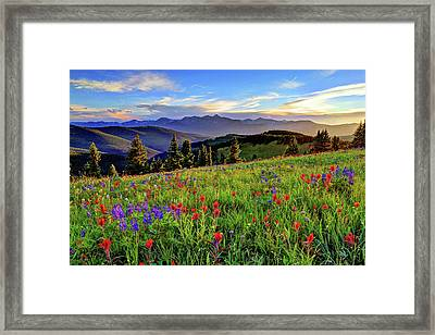 Wildflower Sunset Hill Framed Print by Scott Mahon
