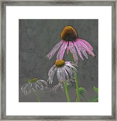 Wildflower Talk Framed Print by Lonnie Tapia