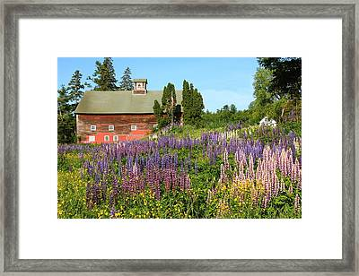 Framed Print featuring the photograph Wildflowers And Red Barn by Roupen  Baker