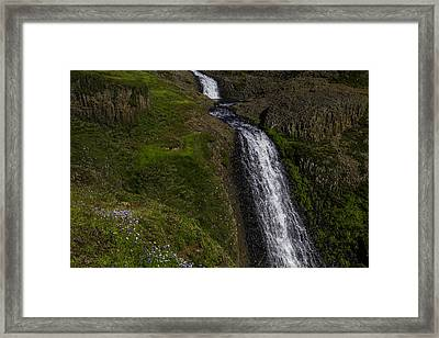 Wildflowers By Falls Framed Print