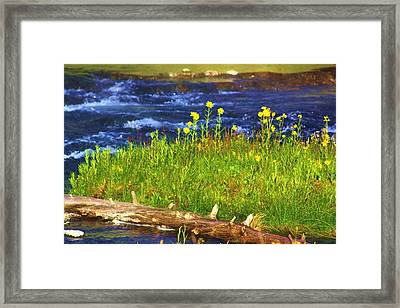 Wildflowers By The River Framed Print by Russell  Barton