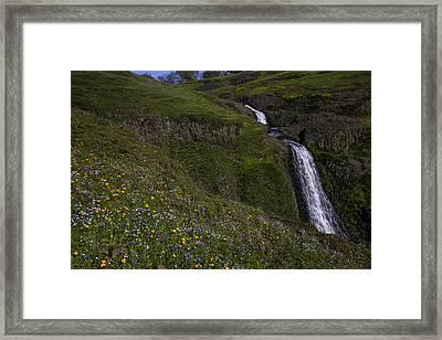 Wildflowers By Waterfall Framed Print