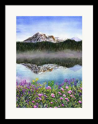 Wildfowers Framed Prints