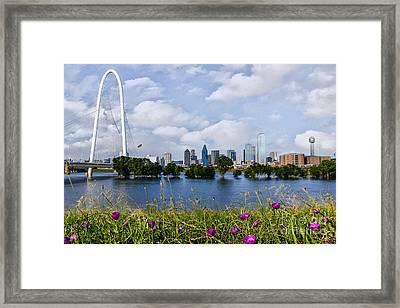 Wildflowers Overlooking Dallas Framed Print by Tamyra Ayles