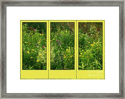 Framed Print featuring the photograph Wildflowers Through A Window by Smilin Eyes  Treasures