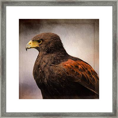 Wildlife Art - Meaningful Framed Print