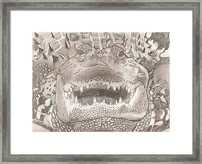 Wildlife Portrait Original Sketch By Pigatopia Framed Print by Shannon Ivins