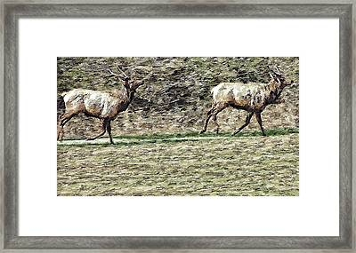 Wildlife Tapestry Framed Print