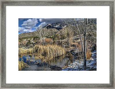 Framed Print featuring the photograph Wildlife Water Hole by Alan Toepfer