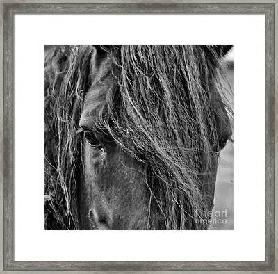 Wildling Framed Print