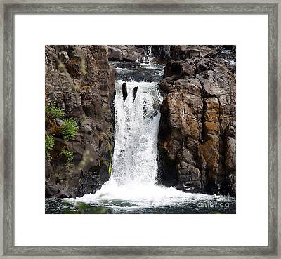 Wildwood Falls Framed Print by Billie-Jo Miller