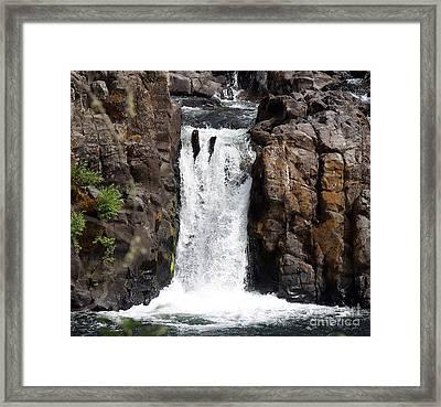 Wildwood Falls Framed Print