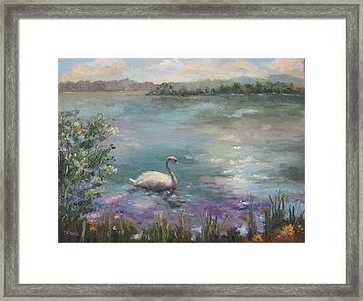 Wildwood Serenity Framed Print