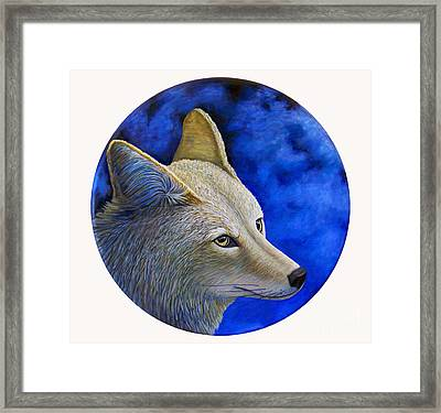 Wiley Coyote Framed Print by Brian  Commerford