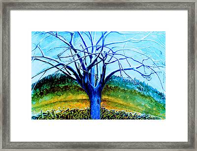 Wiliwili Framed Print by Kevin Smith