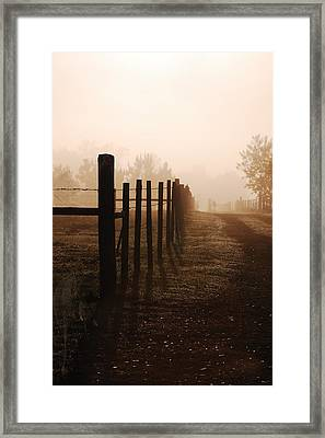 Will They Be Mist Framed Print by Robert Meanor