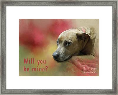 Will You Be Mine? Framed Print