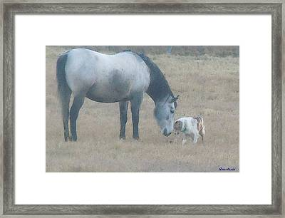 Will You Play With Me Framed Print by Anastasia Savage Ealy