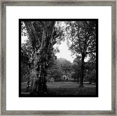 Will You Remember Me When I'm Gone Framed Print by Mark Milar