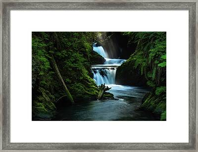 Framed Print featuring the photograph Lush Willaby  by Expressive Landscapes Fine Art Photography by Thom