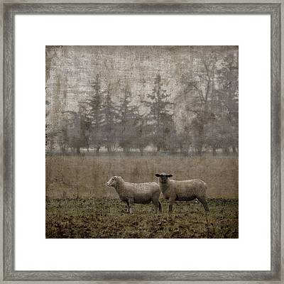 Willamette Valley Oregon Framed Print