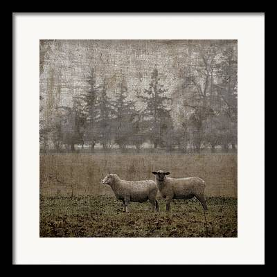Bucolic Scenes Photographs Framed Prints