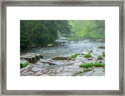 Williams River Pouring Rain Framed Print by Thomas R Fletcher
