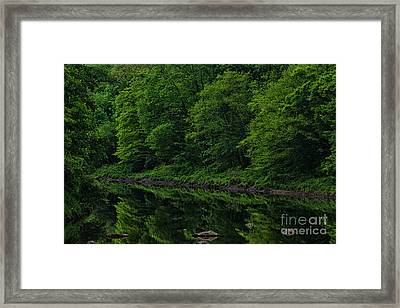 Williams River Spring Reflections Framed Print
