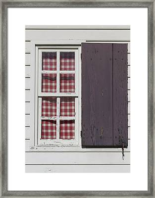 Williamsburg Window 33 Framed Print