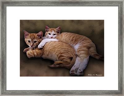 Willie And Templeton Framed Print