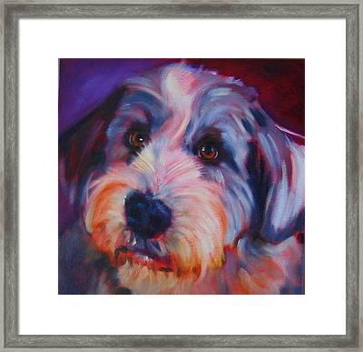 Willie Framed Print