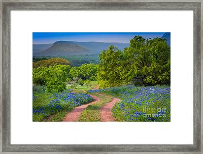 Willow City Road Framed Print by Inge Johnsson