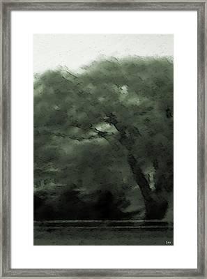 Willow Green Framed Print by Debra     Vatalaro