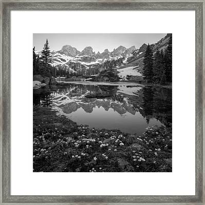Willow Lake Black And White Framed Print by Aaron Spong