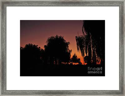 Willow Tree Silhouettes Framed Print