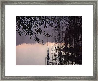 Willow's Dawn Framed Print