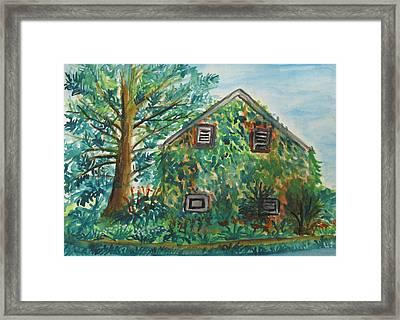 Willowwood Framed Print by Caroline Lifshey