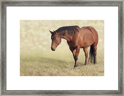 Framed Print featuring the photograph Wilma by Debby Herold