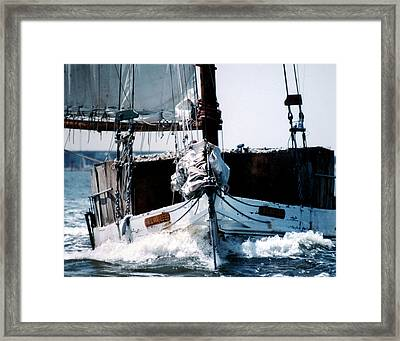 Wilma Lee Framed Print by Skip Willits