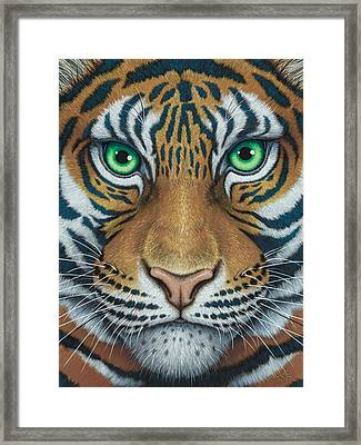 Wils Eyes Tiger Face Framed Print