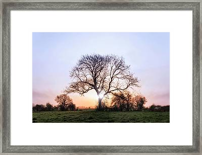 Wimborne Minster - England Framed Print