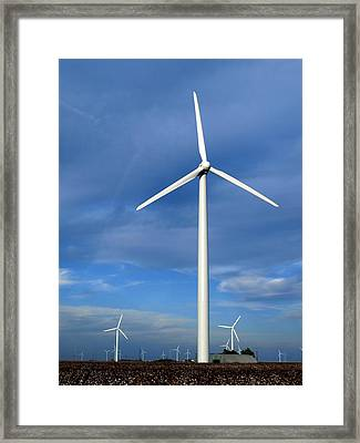 Wind And Cotton Harvest Framed Print by James Granberry