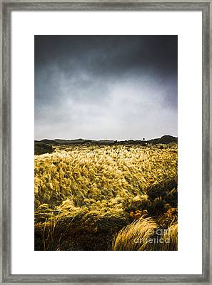 Wind Blown Grassland  Framed Print