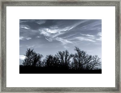 Wind Dancing On Trees Framed Print