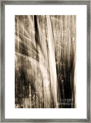 Wind Framed Print by Emilio Lovisa