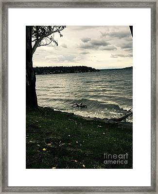 Wind Followed By Waves Framed Print