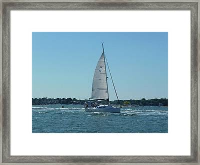 Wind In The Sails Framed Print by Margie Avellino