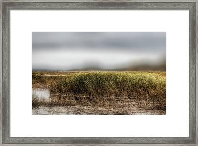 Wind In The Saltmarsh Framed Print