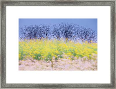 Wind Strokes Framed Print