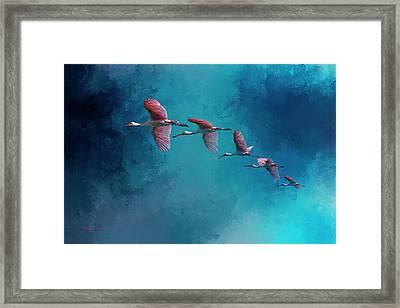 Wind Surfing Framed Print